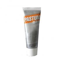 """Паста """"PASTUM gas"""" (тюбик 25г.) газ"""
